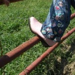 Life With Ladybug: Horse-play