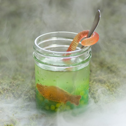swamp-juice-halloween-recipe-photo-260-ff1009totma01.jpg