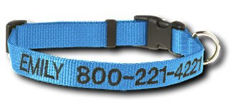 Product spotlight: Check out this dog collar!
