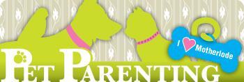 Pet Parenting: Rover's diet
