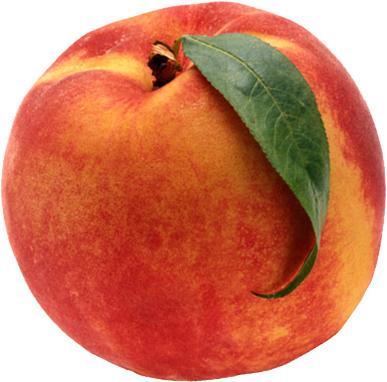 http://nwamotherlode.com/wp-content/uploads/2010/06/peach.jpg