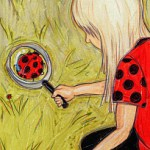 Life with Ladybug: What a trip