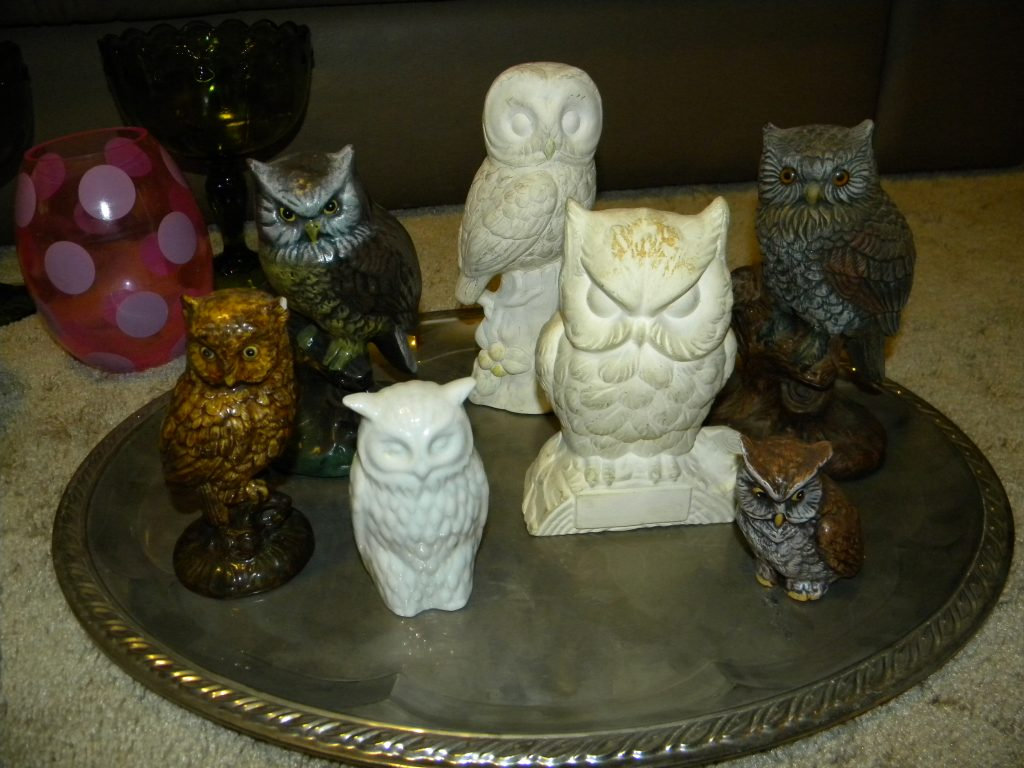owls before