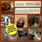 Photo report: Fun fall day at Farmland Adventures