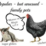 Mamas on Magic 107.9: Exotic family pets