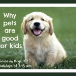 Mamas on Magic 107.9: Kids and pets