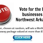Northwest Arkansas Mom's Choice Awards 2013 and a HUGE giveaway!
