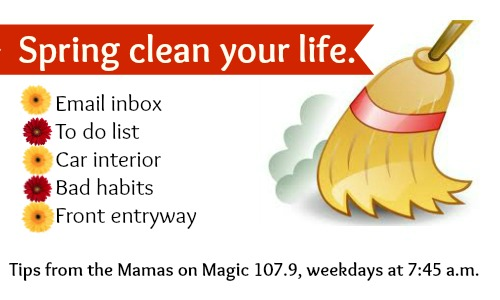 spring clean graphic