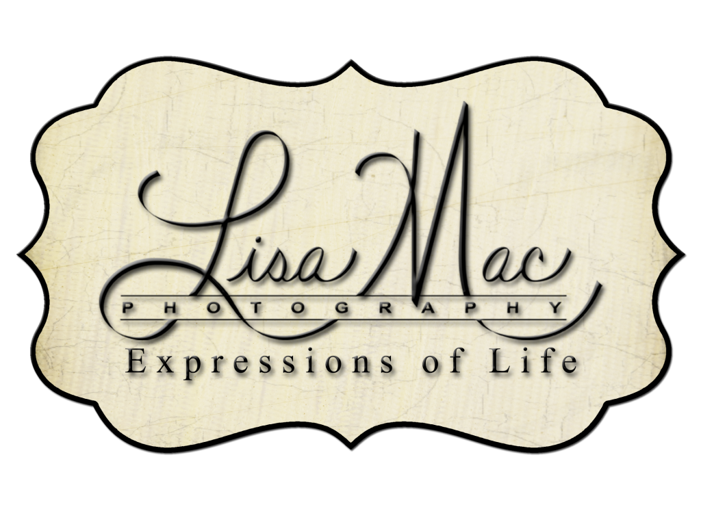 lisa mac logo2