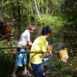 Botanical Garden of the Ozarks Summer Camps for little and big kids!