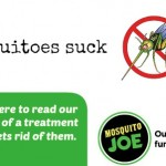 Get rid of mosquitoes in your yard with Mosquito Joe