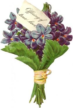 Victorian Violets