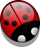 ladybug round