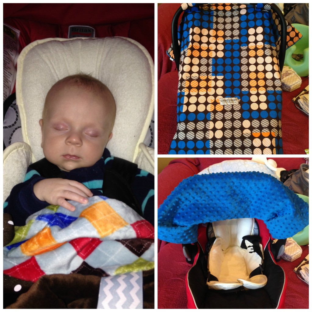 liz car seat collage
