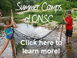 onsc summer camps 2014