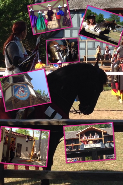 ren fair collage