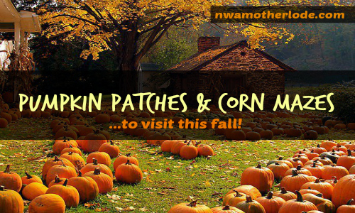 Guide: Corn mazes and pumpkin patches to visit in Northwest Arkansas!