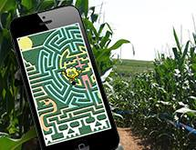 maze tracker
