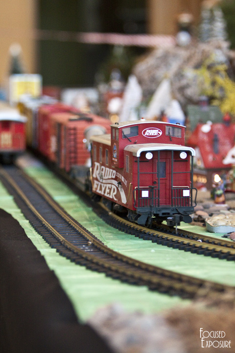 Botanical Gardens of the Ozarks Christmas Train Exhibition