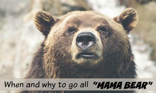 MAMA BEAR SLIDER