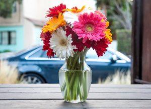 flower-vase-393423_640 (2)