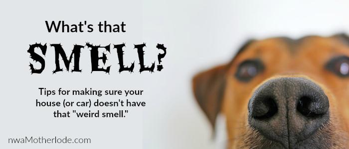 Smell slider 700