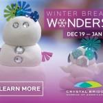 Winter Break Wonders: Special family events start at Crystal Bridges tomorrow!