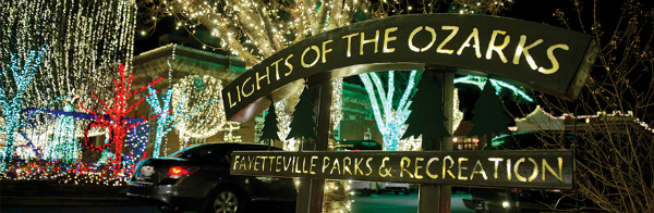 lights of ozarks photo