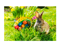 easter bunny, rogers