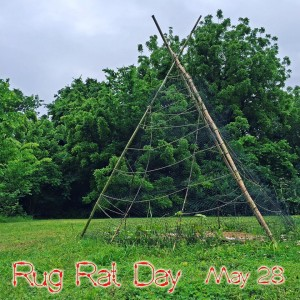 rug rat day