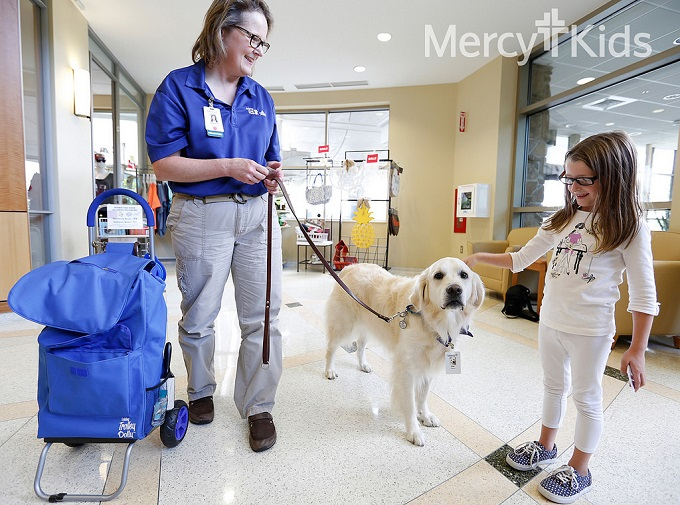 Dirk the therapy dog at Mercy
