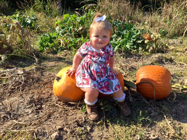 Local Snapshots: Fall Snapshot Contest