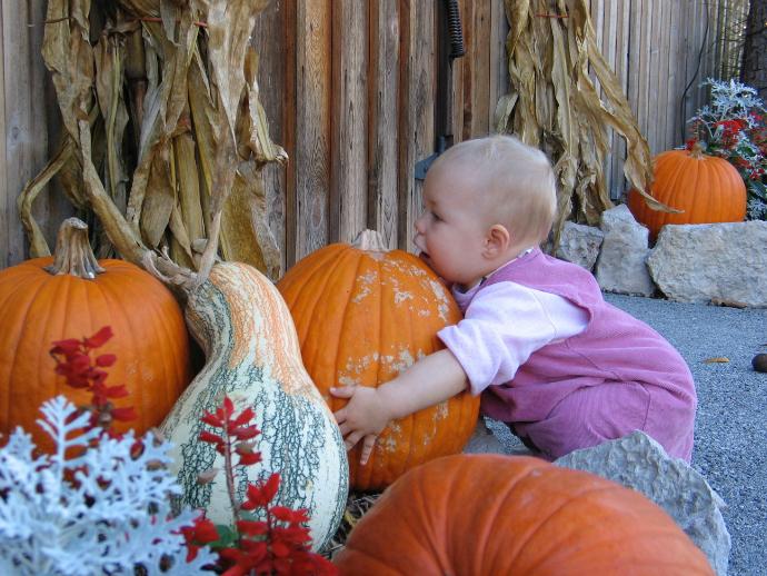 pumpkin-hugger1