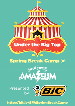 spring break camp, amazeum