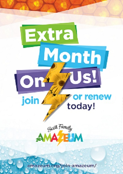 Amazeum extra month on us