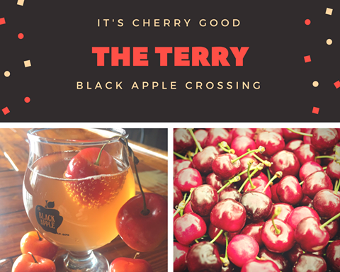 The Terry, tart cherry cider at Black Apple Crosing, Nothwest Arkansas