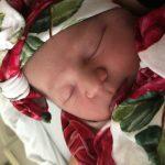 Baby Gear & Gadgets: Posh Peanut swaddle blankets