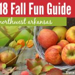 2018 Fall Fun Guide: Top 10 things to do with your family this fall in Northwest Arkansas!