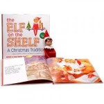Life with Ladybug: Elf on the Shelf (and lots of other places)!