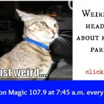 Mamas on Magic 107.9: Weird news about kids