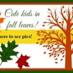 Fall photos in Northwest Arkansas
