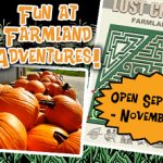 Farmland Adventures corn maze, pumpkin patch opens Friday!