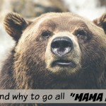 "When and why to use ""Mama Bear"" mode"