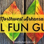 Fall Fun Guide: Top 10 things for families to do this fall in Northwest Arkansas!