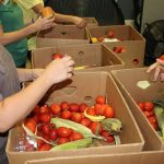 Volunteering with Kids: Ways to help at the Northwest Arkansas Food Bank