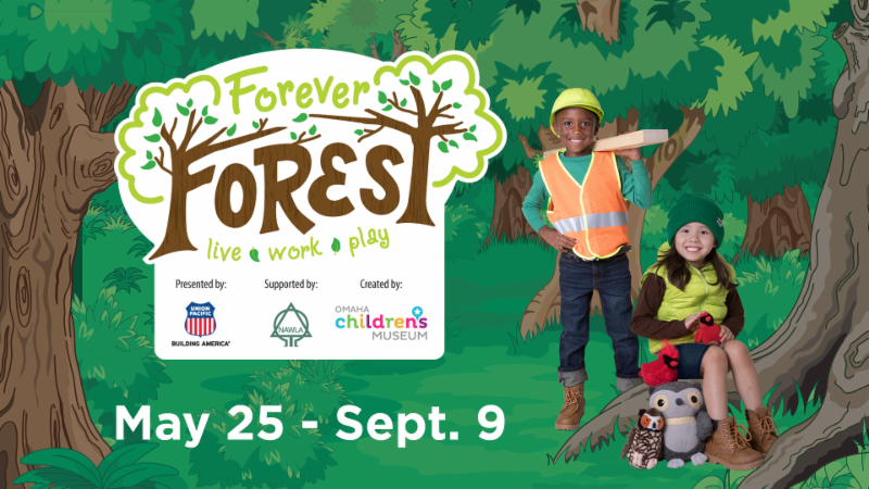 2019 Fun Family Outings Forever Forest Exhibit At The Amazeum