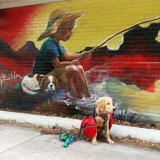 Fun Places To Take Kid Or Family Photos With Murals In