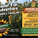 Fun Family Outings in Northwest Arkansas: Farmland Adventures