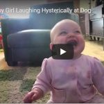 Friday Funny: When you REALLY need to laugh